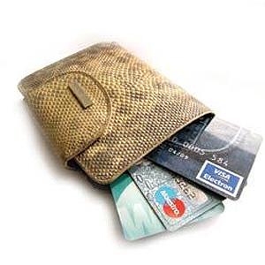 Плюсы и минусы кредитных карт. (Проявляйте осторожность, обращаясь за кредитом)